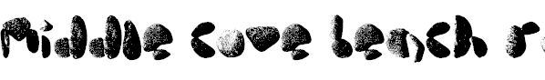 Free Font middle cove beach rocks